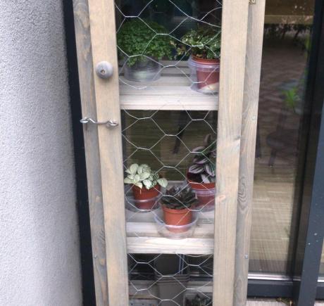 Plantenfans opgelet!